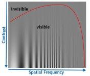 typical-contrast-sensitivity-function.jpg