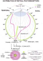 Eye_Diagram_02.png