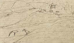 IMG_3940 Eurasian Spoonbills @ Kingsbridge Estuary April 1988.JPG