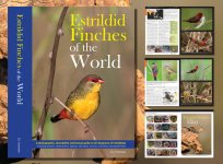 Estrildid Finches of the World photo.jpeg