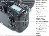 Nikon D7200 controls - exposure.jpeg