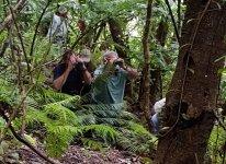 Briding in The Jungle 2.jpg
