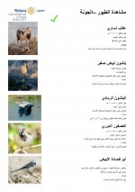 Bird Identification Guide - El Gouna Park - Arabic - Page 1.jpg